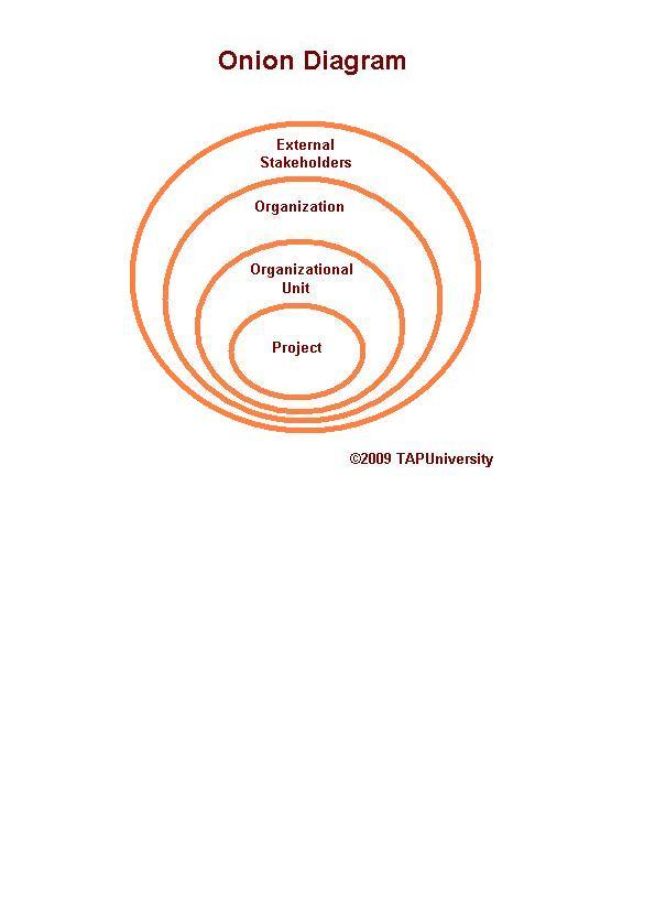 Onion diagram tapuniversity ccuart Choice Image